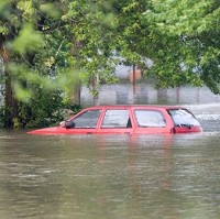 Vehicles with flood faults may be sold on Image